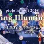 もうすぐクリスマス…☆彡